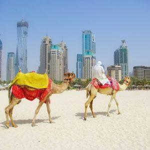 Magical Package of Dubai
